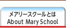 メアリースクールとは